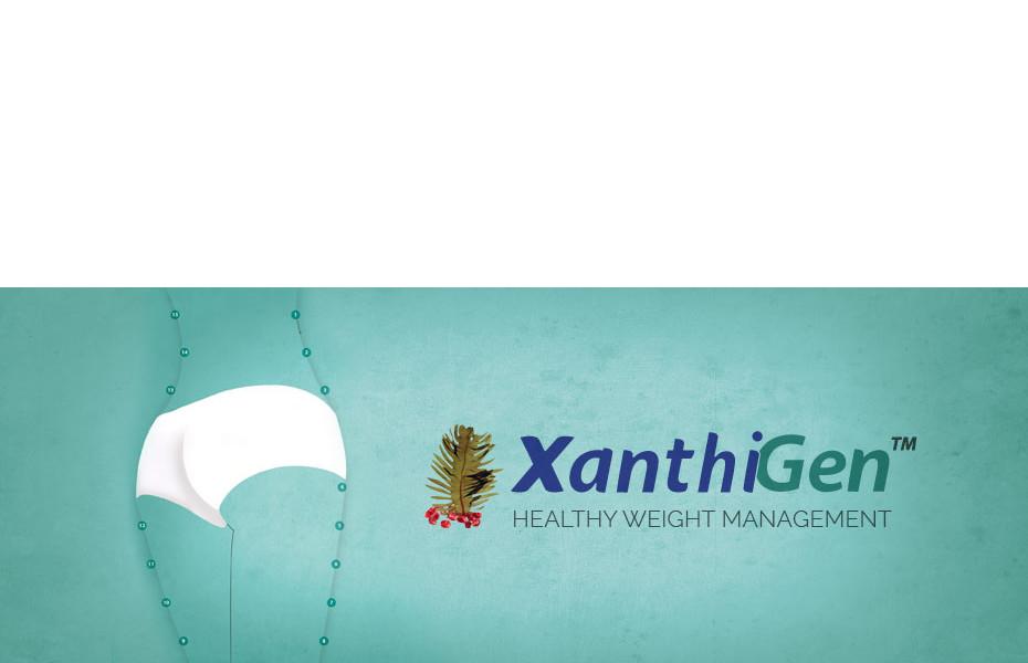 Best weight loss app windows image 9