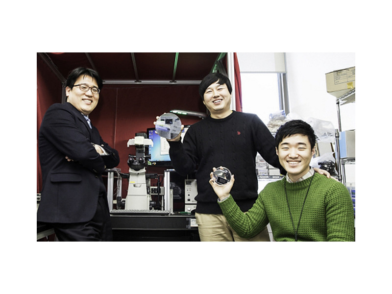 Kim Tae-sung, professor at the School of Mechanical and Nuclear Engineering at Ulsan National Institute of Science and Technology (1st from left) and his advisees Kim Min-suk and Ha Do-kyung holding silicon wafers with micro- and nano-scale patterns.