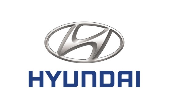 Hyundai Motor has been suffering a decline in its domestic market share.