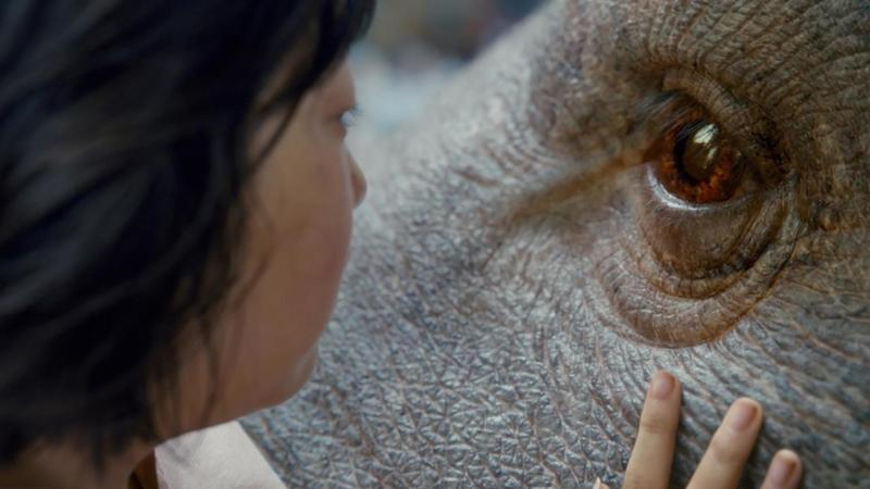 "A scene of ""Okja,"" a film of which Netflix invested in the production."