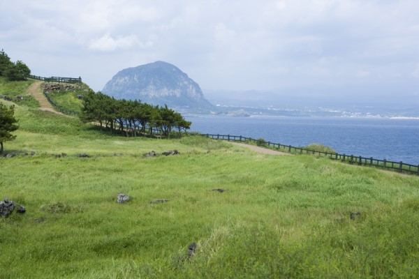 Jeju Island's land owned by foreigners increased by 970,000 square meters this year.