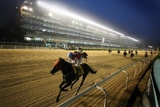 The Korea Racing Authority (KRA) succeeded in signing a contract to extend the export of horse races with the US on July 6.