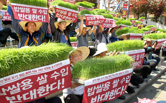 In May 2015, more than 300 South Korean farmers held a protest in Seoul to block the import of rice for boiling.